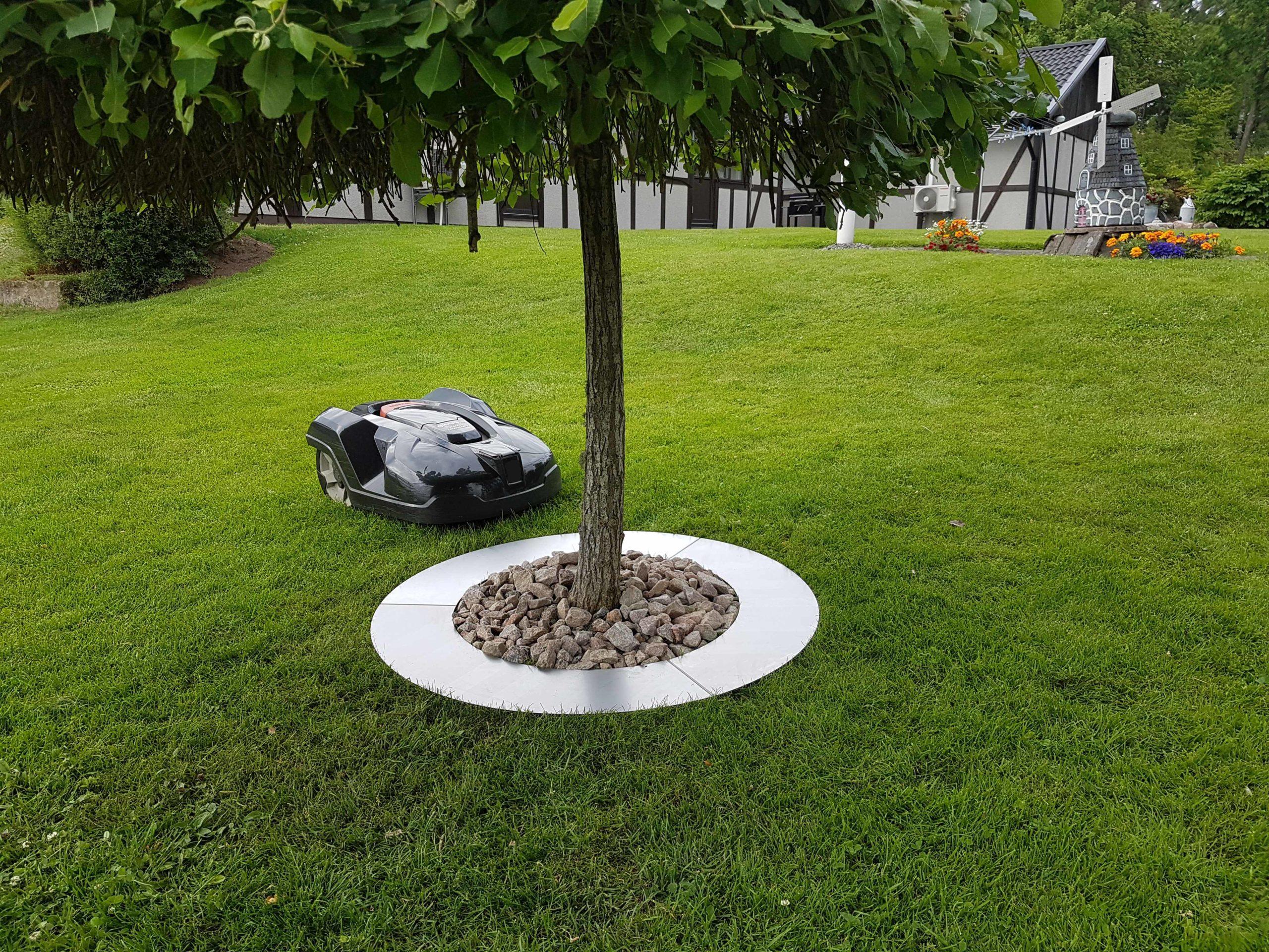Träd och buskring Råjärn